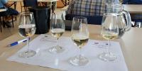 Održano 1. vinarsko predavanje